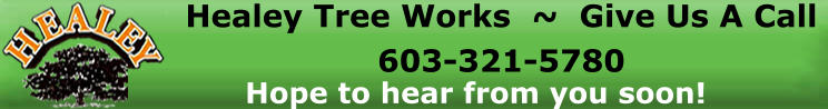 Healey Tree Works  ~  Give Us A Call  603-321-5780 Hope to hear from you soon!